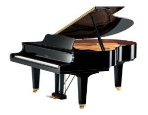 Risultati immagini per pianoforte a coda